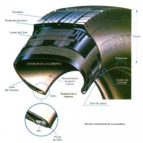 ¿Qué son los neumáticos radiales?